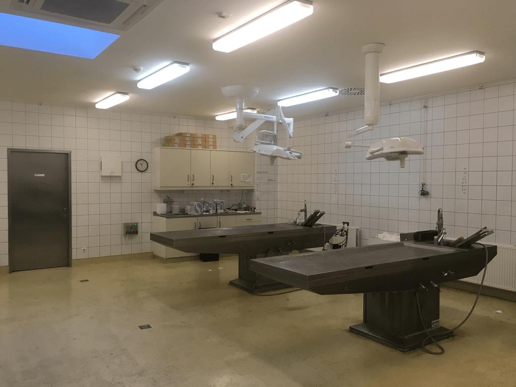 Uzsoki Utcai Kórház pathológia